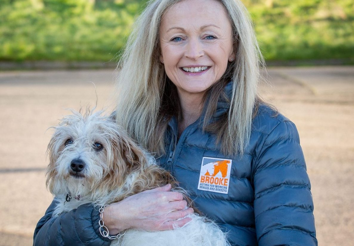 Boost for Scottish fundraisers as Brooke becomes registered charity in Scotland