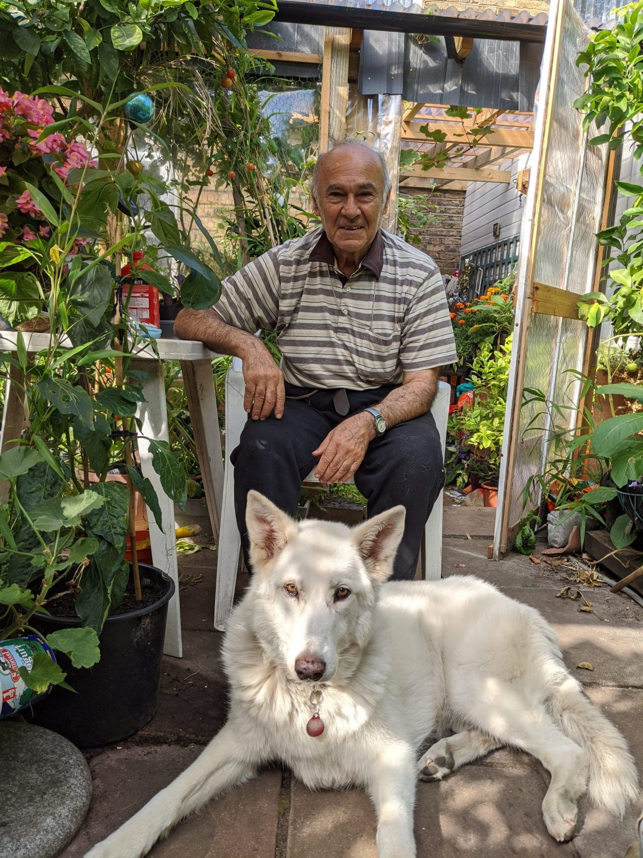 New charity aims to tackle isolation and loneliness in over 55s with help from furry friends
