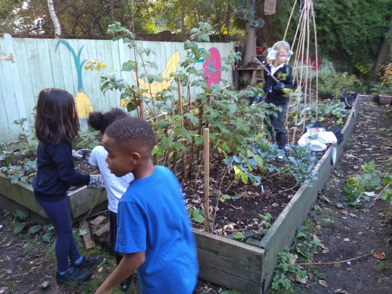Green-fingered kids go wild as healthy food scheme is extended