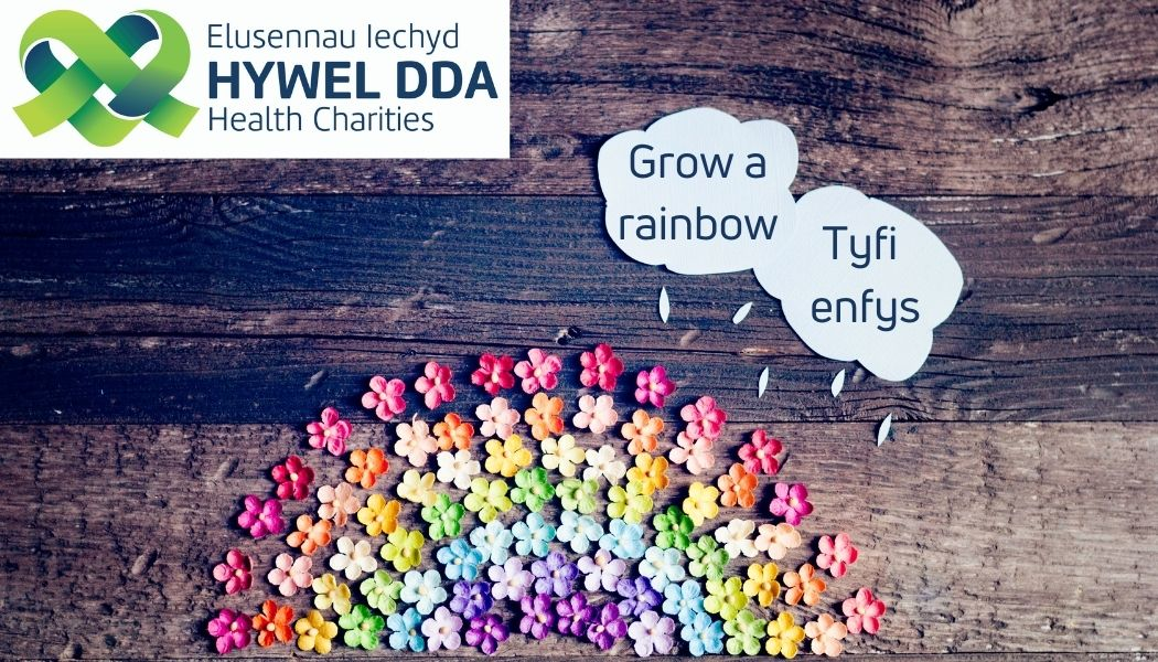 Hywel Dda Health Charities encourages everyone to Love the Outdoors this May