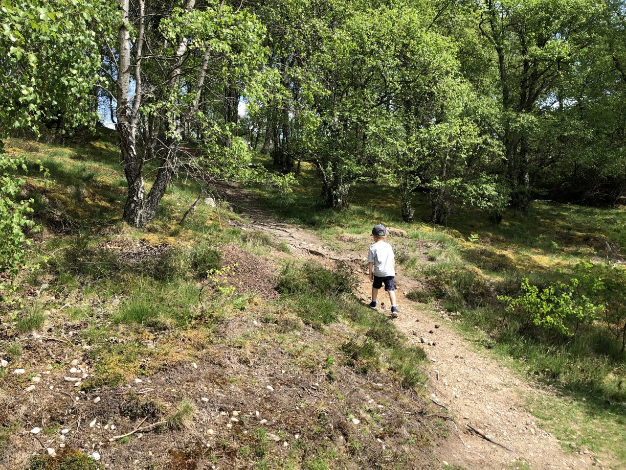 Walking charity shares Edinburgh's top spots to switch up family stroll