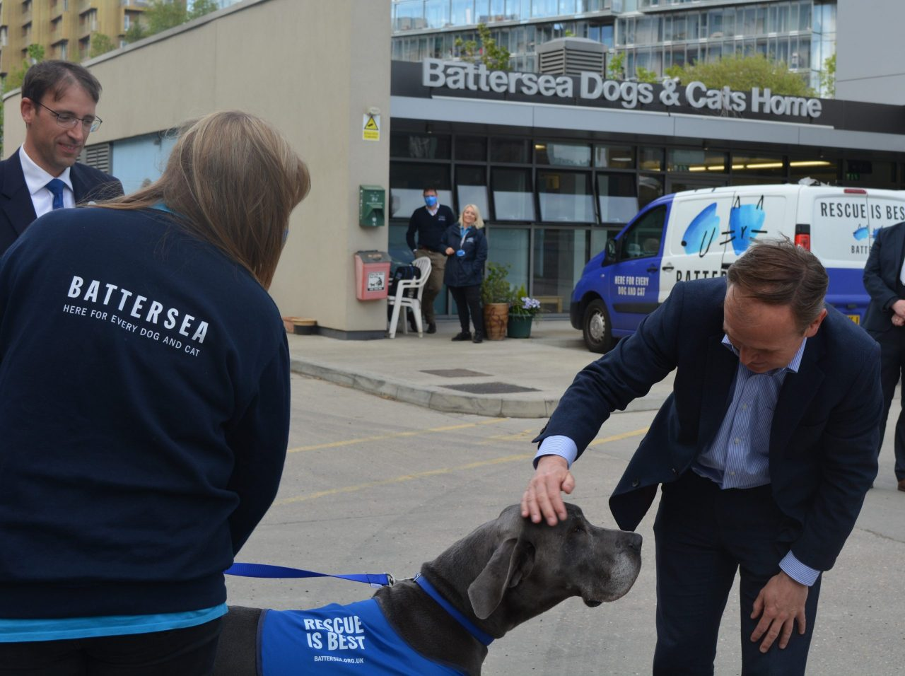 Battersea welcomes Government action plan recognising animal welfare