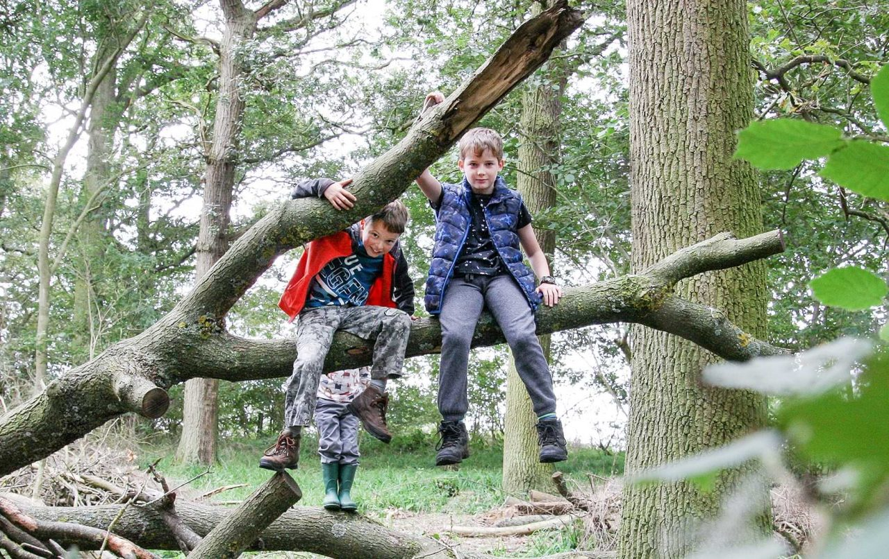 Heart of England Forest's 'Growing Future Forest Guardians' receives major boost